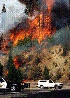 Read about the Cleveland Fire (Eldorado National Forest)